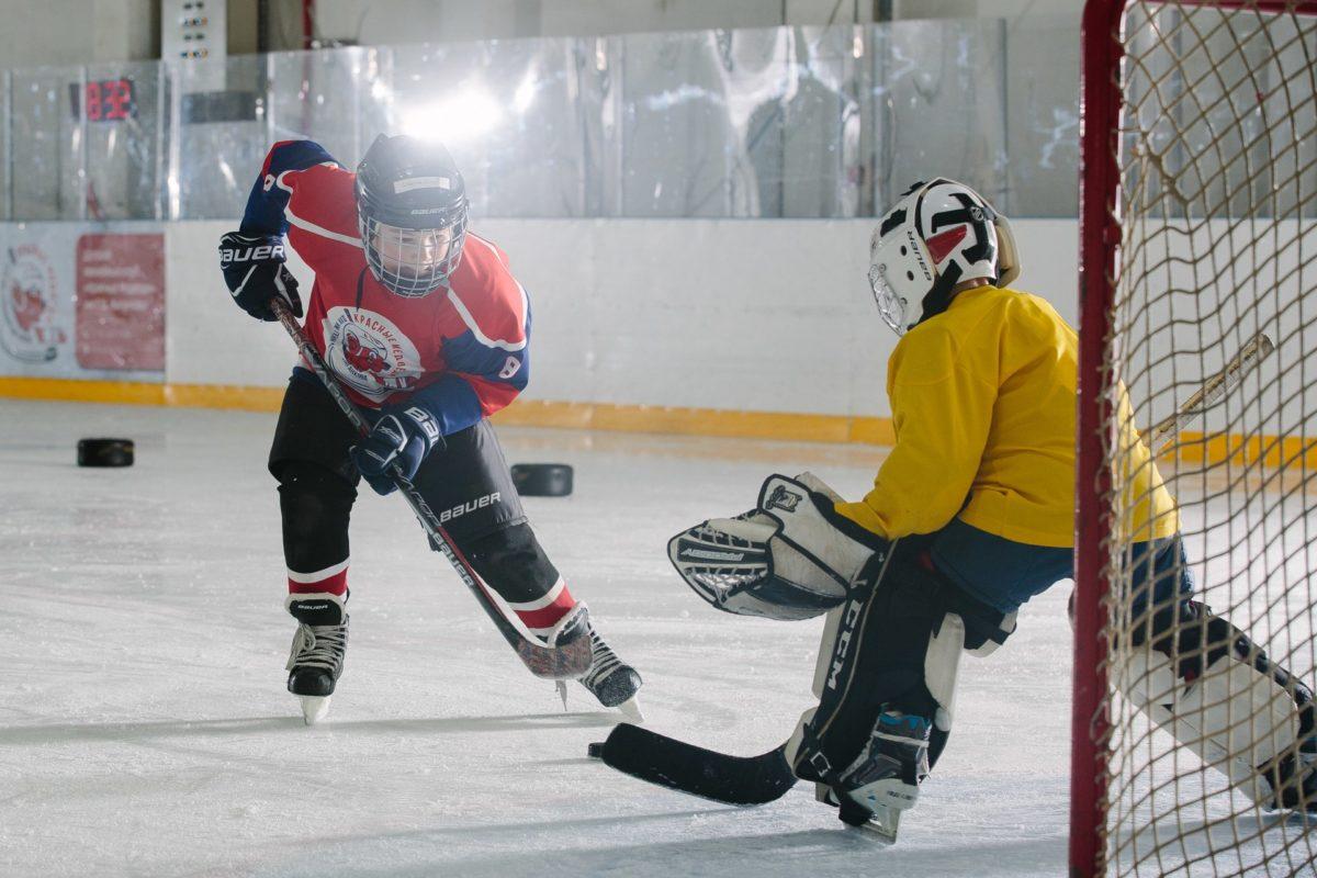 Центр «ПАРНАС» и ДХК «Красные Медведи» приглашает на ЛЕТНИЕ сборы игроков и вратарей 2009-2013 г.р.