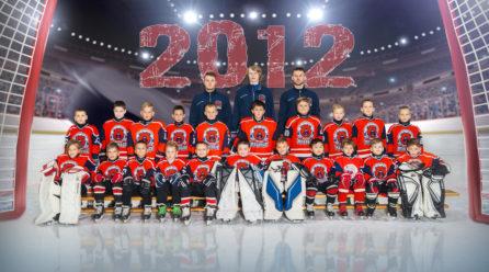 Приглашаем в состав команд 2009 гр. -2015 гр.