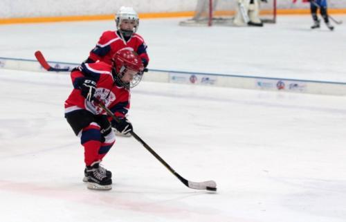 Детский хоккейный фестиваль «День Защитника Отечества» - 2017